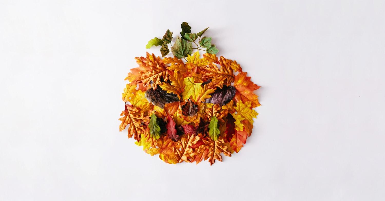 Pumpkin made of leaves