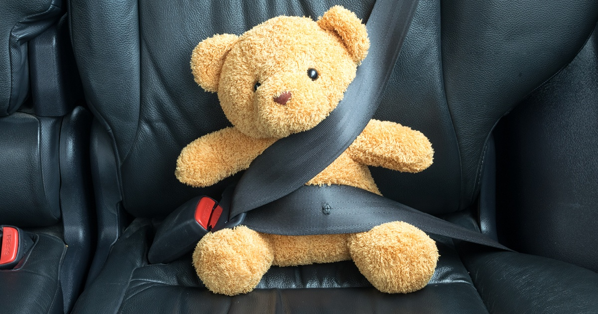 Teddy bear buckled in with a seat belt